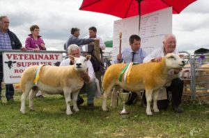3 Reserve Supreme and Supreme Champion Texels